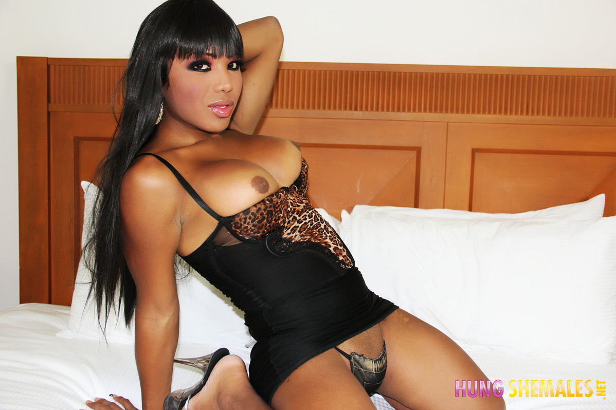 naked-boobies-ethnic-shemales-galleries